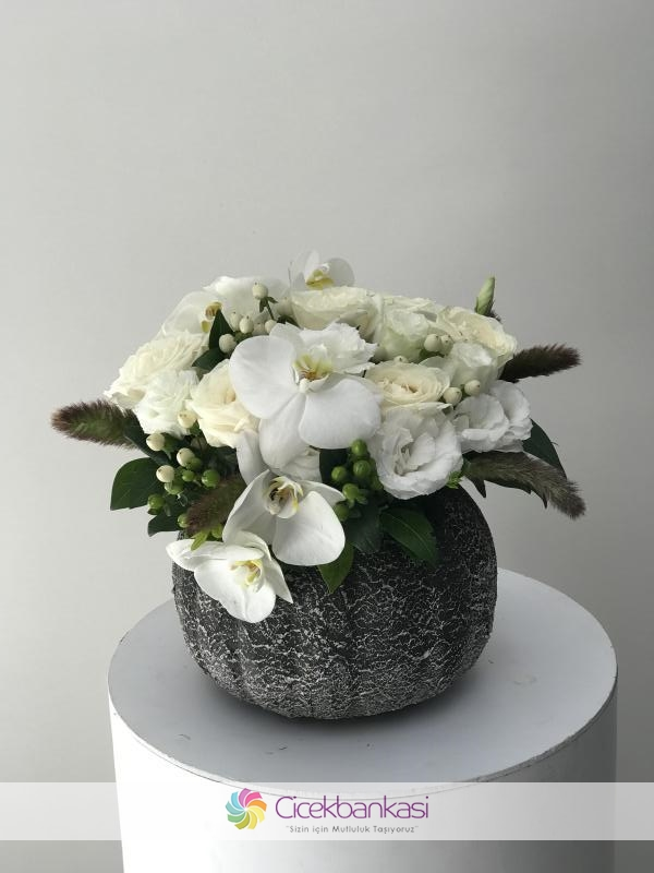 White Orcid's and Roses